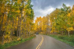 Bil på vei gjennom et høstlig skogkledd landskap